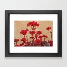 Rustic Flowers Framed Art Print