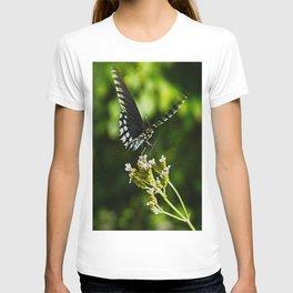 Flattering Flutter T-shirt
