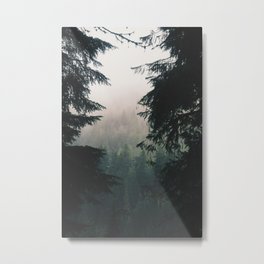 Forest IV Metal Print