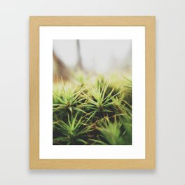 spikeeee Framed Art Print