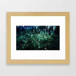 Nature Combined Framed Art Print