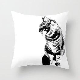 Coriander Throw Pillow