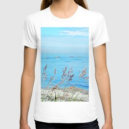 Circle of Rocks and the Tall Grass T-shirt