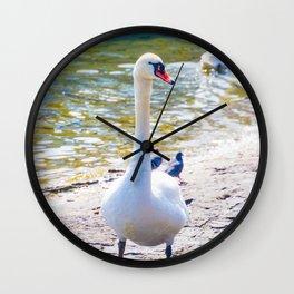 Swan on Lucerne Lake Wall Clock