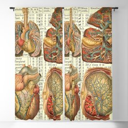 Beautiful Body Parts on Vintage Farmers Almanac page Blackout Curtain