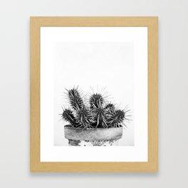 Nature IV cactus Framed Art Print