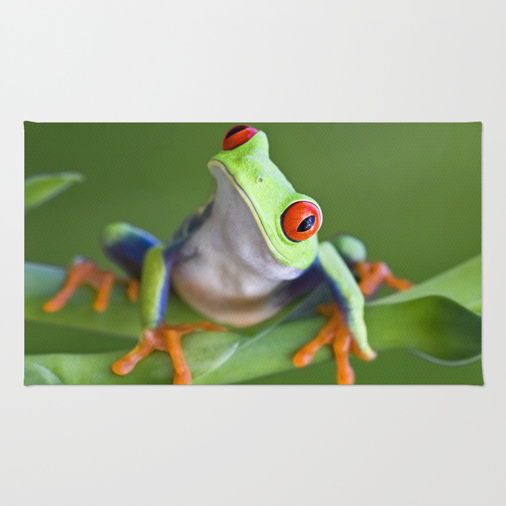 Red-eyed Tree Frog Rug by Markkostich RUG975116