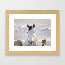 Rustic Winter Horse Framed Art Print