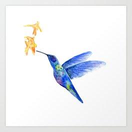 WATERCOLOR HUMMINGBIRD AND FLOWERS Art Print