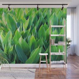 Green leaves so beautiful. Wall Mural