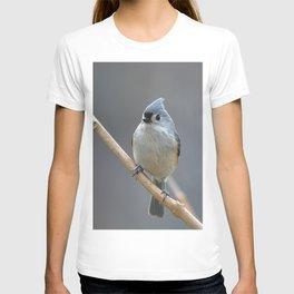 Tufted Titmouse 9639 T-shirt