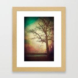 Somedays Framed Art Print
