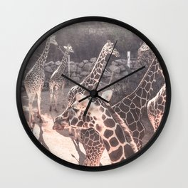 Giraffe Party // Spotted Long Neck Graceful Creatures in Wildlife Preserve Wall Clock