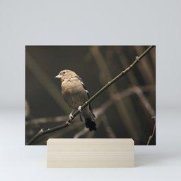 Birdie 1 Mini Art Print