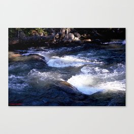 Morning Sun on the Rapids of Vallecito Creek, No. 1 of 2 Canvas Print