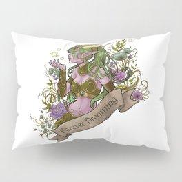 Forever Dreaming Pillow Sham