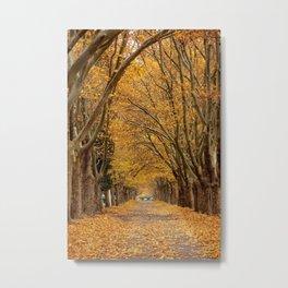 Fall Tunnel Metal Print