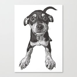Cute playful puppy wagging it's tail. Canvas Print