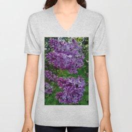 Lilacs in Bloom Unisex V-Neck