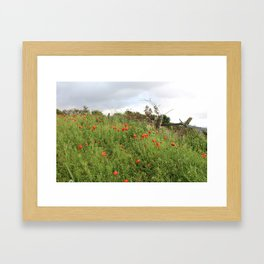 Poppies on a Hill Framed Art Print