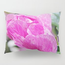 Pink Musk Mallow Rolled-up Pillow Sham