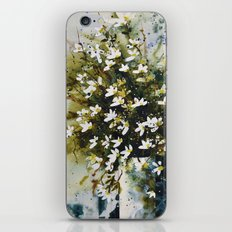 Marguerites iPhone & iPod Skin