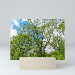Almost cloudy blue sky over green trees Mini Art Print