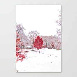 Red Winter Leafs (Color) Canvas Print