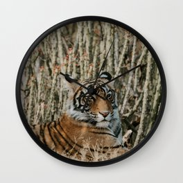 TIGER IN THE WILD RESTING Wall Clock