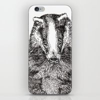 badger iPhone & iPod Skins featuring Badger by Meredith Mackworth-Praed
