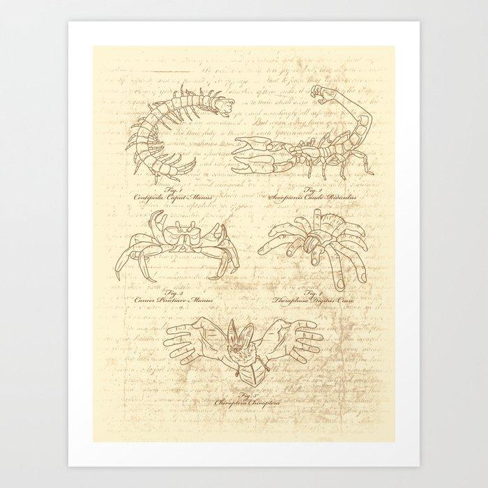 Manus Creatura Art Print
