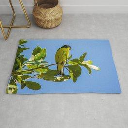 Yellow Bird - II Rug