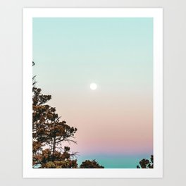 Rainbow Color Sunset // Incredible Clear Sky Photograph Through the Forest Trees Art Print