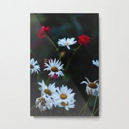 White & Red Metal Print