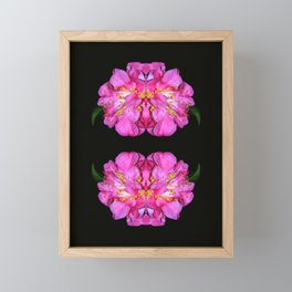 Botanical Abstract Framed Mini Art Print