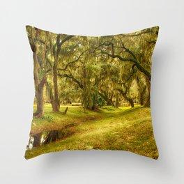 Yellow morning in Georgia Throw Pillow