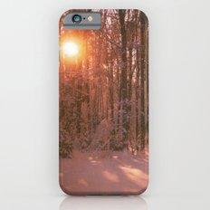 Sunrise in Winter iPhone 6s Slim Case