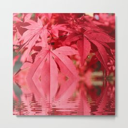 Red Maple Leaves Reflections Metal Print
