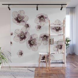 Hana Collection - Falling Sakura Wall Mural