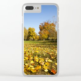 autumn season .  trees Clear iPhone Case