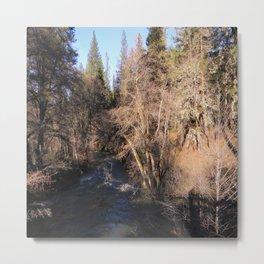 Salt Creek in Hayfork, California Metal Print