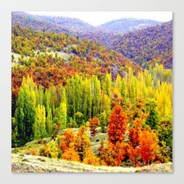 colored3 Canvas Print
