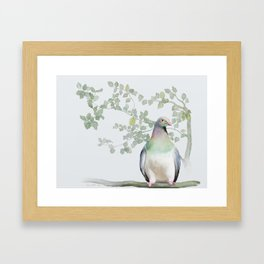 Wood Pigeon Framed Art Print