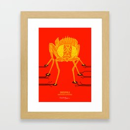 Drosophila: Computational neuroscience Framed Art Print