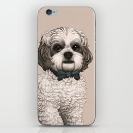 Merry is Smarter Than You iPhone Skin