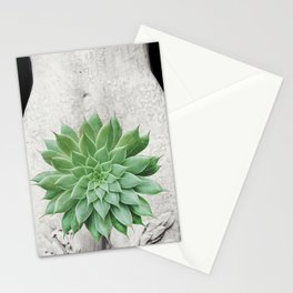 A Succulent Woman Stationery Cards