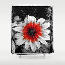 Red Stroke Gaillardia Flower | Nadia Bonello Shower Curtain