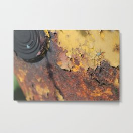 A Rusty Affair Metal Print