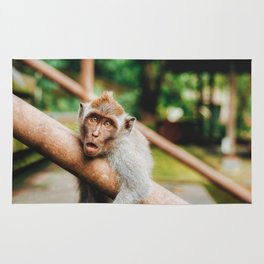 Cute Monkey (Color) Rug