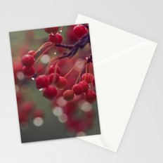 candied Stationery Cards